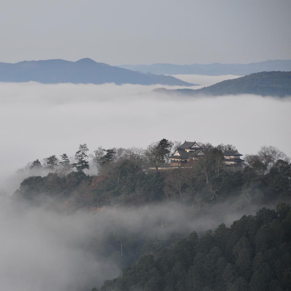 雲海に浮かぶ難攻不落の城塞に、...