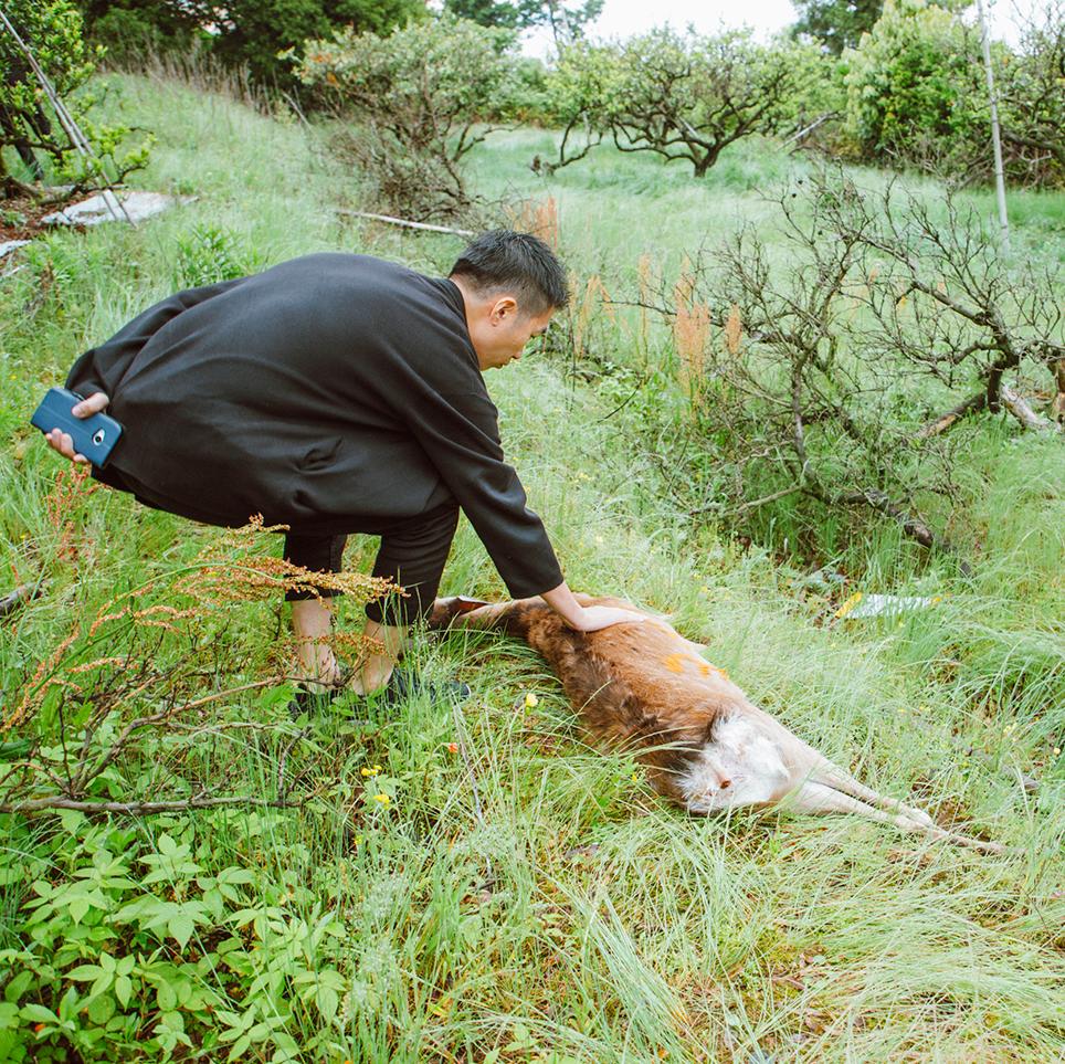 フードキュレーターとその土地の食材生産者が創り出す ...
